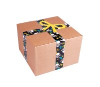 Duck Tape 100-11 Cloth Duct Tape Pirates 48mm x 9,1m